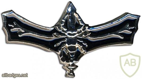 לוחם סטינגר img483