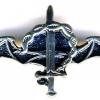 לוחם סטינגר - סוללת גור ישאג img449
