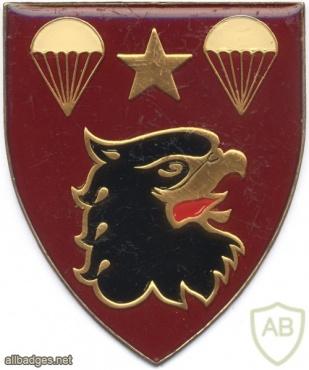 SOUTH AFRICA 44 Para Bde, 4 Parachute Battalion arm flash, right img1398
