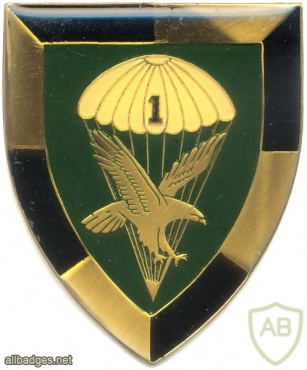SOUTH AFRICA 44 Para Bde, 1 Parachute Battalion arm flash, type I ,right img1389