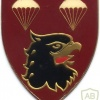 SOUTH AFRICA 44 Para Bde, 2 Parachute Battalion arm flash, right img1394
