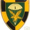 SOUTH AFRICA 44 Para Bde, 1 Parachute Battalion arm flash, type II , left