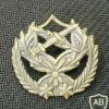 דרגת רב-נגד ישנה img1943