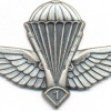 ALGERIA Enlisted Advanced Parachutist wings