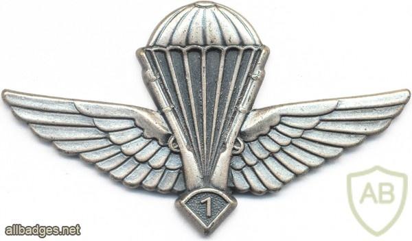 ALGERIA Enlisted Advanced Parachutist wings img2607