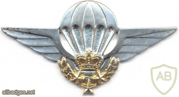 MOROCCO HALO Parachutist wings img2690