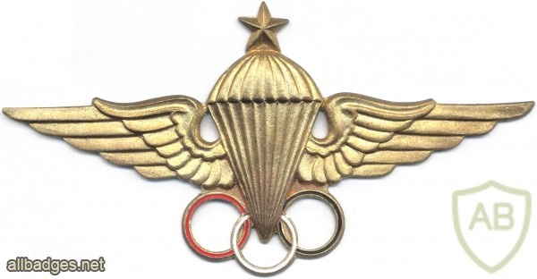EGYPT Parachutist Instructor wings, 3rd Class img2673