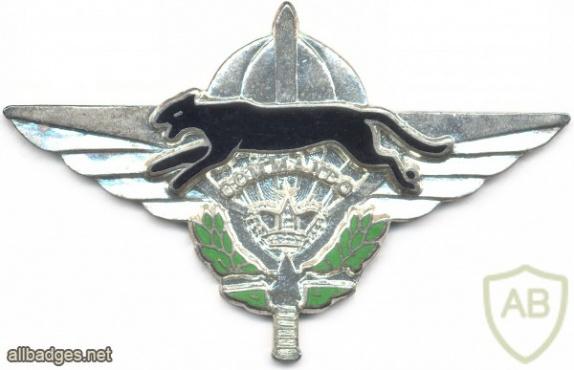 MOROCCO Commando Parachutist wings img2689