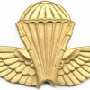ALGERIA Officer Basic Parachutist wings