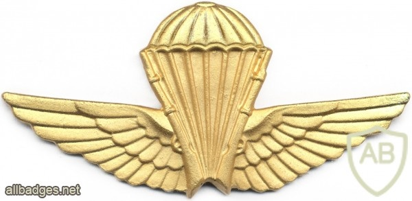 ALGERIA Officer Basic Parachutist wings img2611