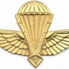 ALGERIA Officer Advanced Parachutist wings img2610
