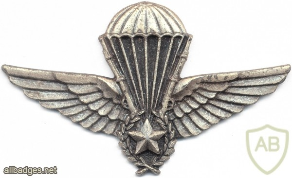 ALGERIA Enlisted Instructor Parachutist wings img2609
