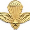 ALGERIA Officer Instructor Parachutist wings