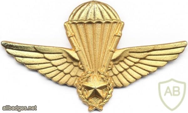 ALGERIA Officer Instructor Parachutist wings img2612
