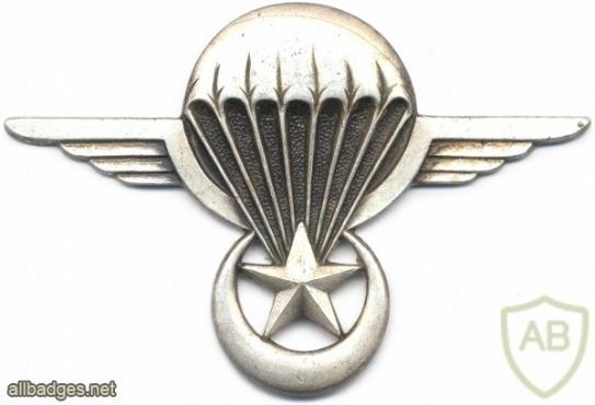 MAURITANIA Parachutist wings img2687