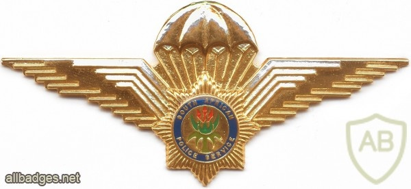 SOUTH AFRICA Police Parachutist qualification wings, Type III, post-1994 img2603