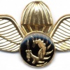 SOUTH AFRICA COIN (Counter-Insurgency) Security Parachutist wings img2589