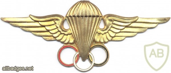 EGYPT Parachutist Instructor wings, 4th Class img2674