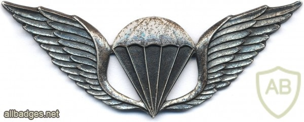 TRANSKEI Parachutist wings, Officer img2867