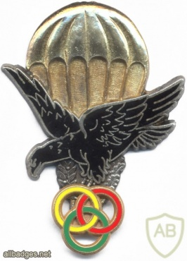 TOGO Parachute Instructor wings img2865