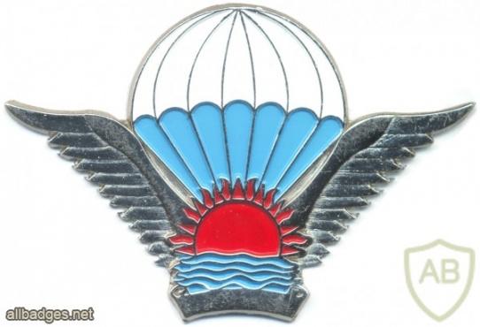 MALAWI Basic Parachutist wings, NCO img2859