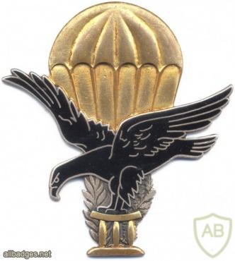TOGO Parachutist wings img2864