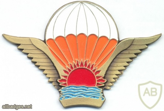 MALAWI Freefall Parachutist wings, Enlisted img2861