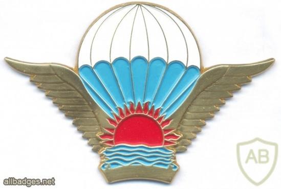 MALAWI Basic Parachutist wings, Officer img2860