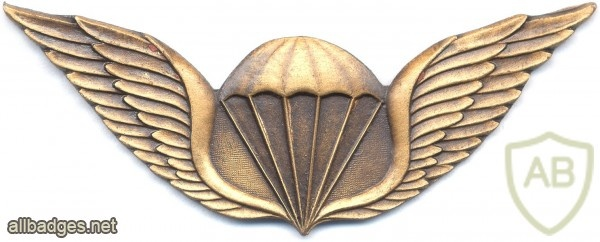 TRANSKEI Parachutist wings, Enlisted img2866