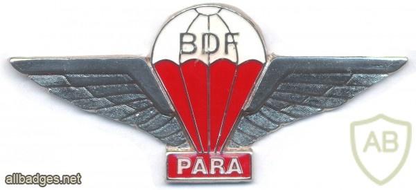 BOTSWANA Parachutist Freefall qualification wings, new type img2922