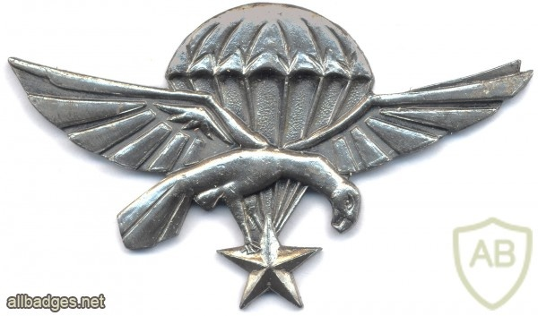 DJIBOUTI Paratrooper Jump Wing, 1st Issue img2931