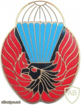 LIBYA Airborne arm badge, Officer img2907