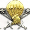 CAMEROON Parachutist wings, Army img2923