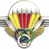 CENTRAL AFRICAN EMPIRE Parachute Instructor Wings img2925