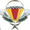 CENTRAL AFRICAN EMPIRE Parachutist Wings img2927