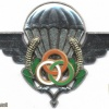 NIGER Instructor Parachute wings img2949