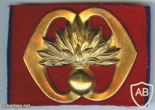 Grenadiers Guards Regiment hat badge img2981