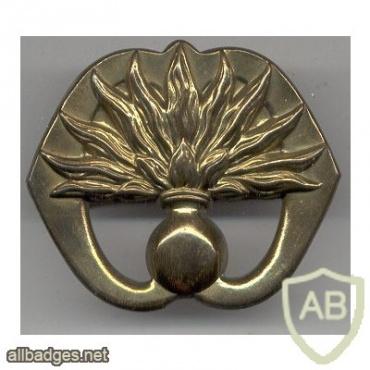 Grenadiers Guards Regiment hat badge img2980