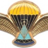 LESOTHO 2nd series PJI Dispatcher Parachute wings, gold img3028