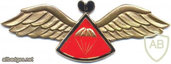 LESOTHO 1st series Basic Parachute wings img3030