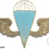 KENYA Parachutist wings, white-blue, gold img3036