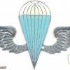 KENYA Parachutist wings, white-blue, silver img3039
