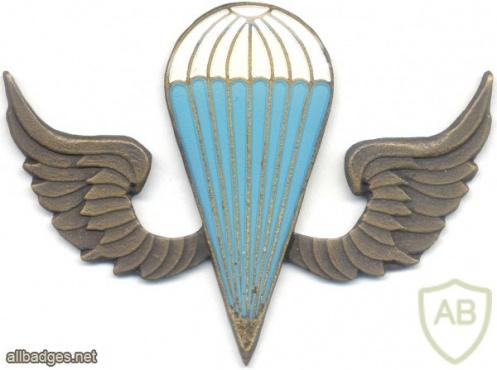 KENYA Parachutist wings, white-blue, bronze img3035