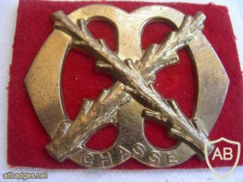 Infantry regiment Chassé hat badge img3429