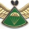 LESOTHO 1st series Advanced Parachute wings