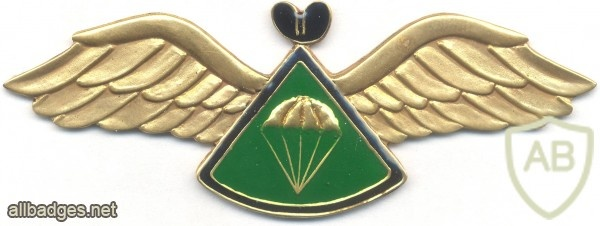 LESOTHO 1st series Advanced Parachute wings img3517