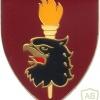 SOUTH AFRICA 44 Para Bde, Parachute Training Center arm flash, left