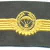 WEST GERMANY Bundeswehr - Army Parachutist wings, Master, Test Design Type IV, 1985 - 1986