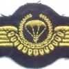 WEST GERMANY Bundeswehr - Navy Parachutist wings, Master, Test Design Type IV, 1985 - 1986