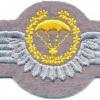 WEST GERMANY Bundeswehr - Army Parachutist wings, Master, Test Design Type I, 1985 - 1986